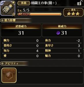 格闘王の拳(闇+)